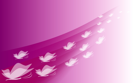 teeny: Many white butterflies on a pink background