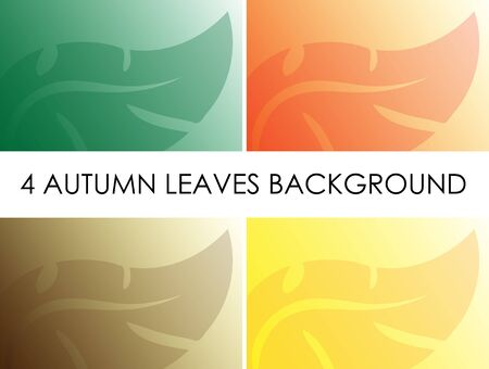 fall leaves: Autumn leaves background - leaves fall - fall colors