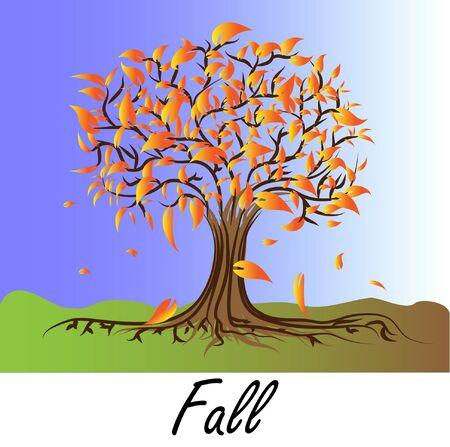 arbre automne: Automne arbre - couleurs de l'automne