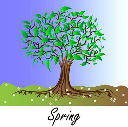 arbre automne: Automne arbre - couleurs du printemps