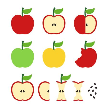 Apple illustration set: full apple, half, bitten, slice, eaten, stub, seeds. Vector red, green, yellow apple illustrations