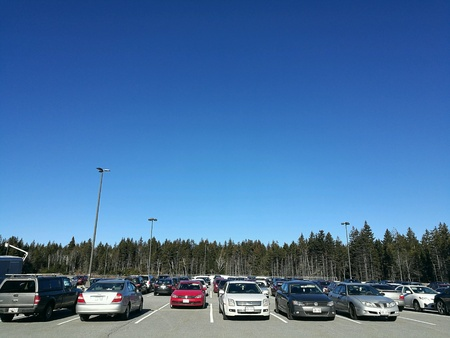 Cars in a parking lot with pine trees and blue sky background Stock Photo