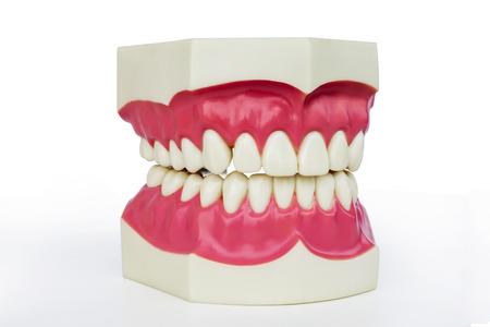 Plastic dentures photo