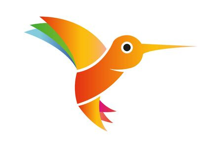 Flying isolated hummingbird with colorful wings and tail. Combination of red, orange, green, blue, yellow and pink colors.