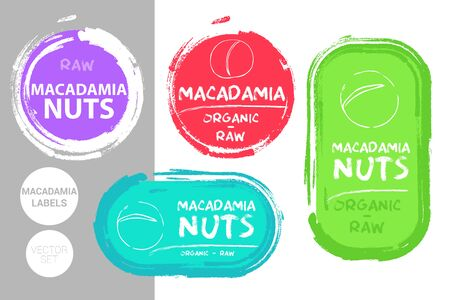 Macadamia nuts colorful label set. Raw organic nuts Badge shapes. Creative Nut tags. Raw food stickers ready for web and print. Painting brush style labels. Brush stroke badges.