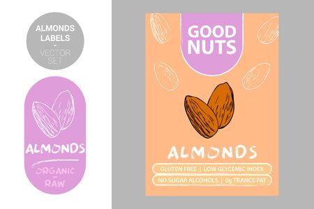 Almond nuts labels with green elements. Cartoon drawn nut silhouettes. Almonds product Badge with text: gluten free, low glycemic index, no sugar alcohols, 0g trance fat. Raw organic sticker 矢量图像