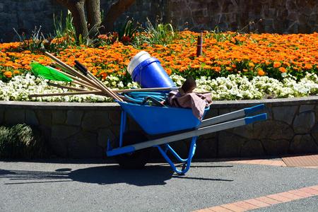 Colorful flower garden with wheelbarrow, work beautiful rake broom pathway
