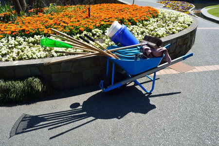 Colorful flower garden with wheelbarrow, work beautiful rake broom pathway