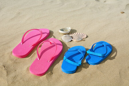 Flip flops and shells on the beach Stock Photo