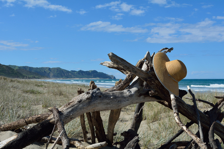 Hat hanging on driftwoodon the beach in New Zealand