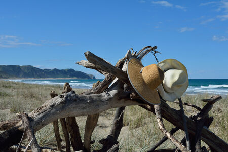 Hats hanging on driftwood on a  New Zealand beach