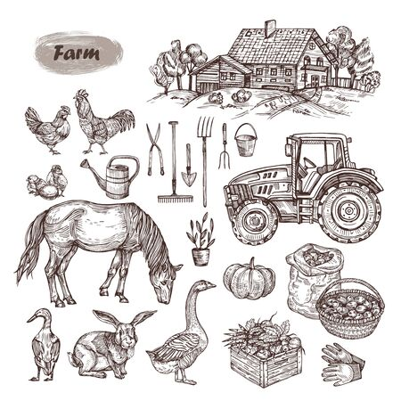Vector hand drawn set - rural landscape, farm animals, tools and machinery.