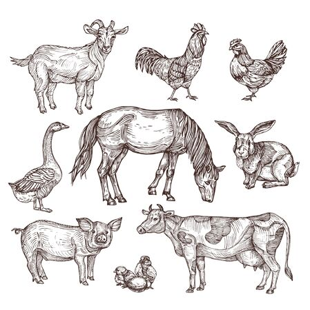 Farm animals set. Hand drawing vector illustration. Vintage style. For advertising, poster,signage.