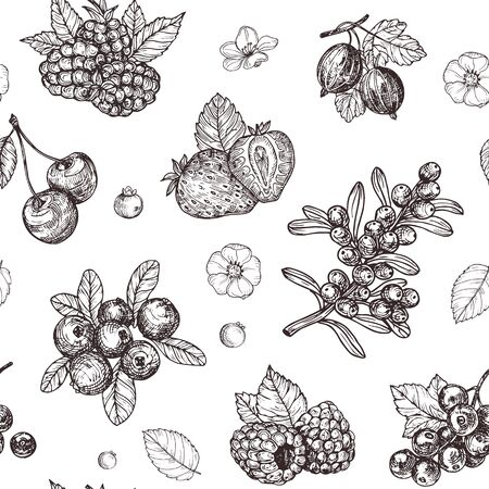 Vector seamless pattern with hand drawn vintage berries. Use for packing, postcard, textiles.