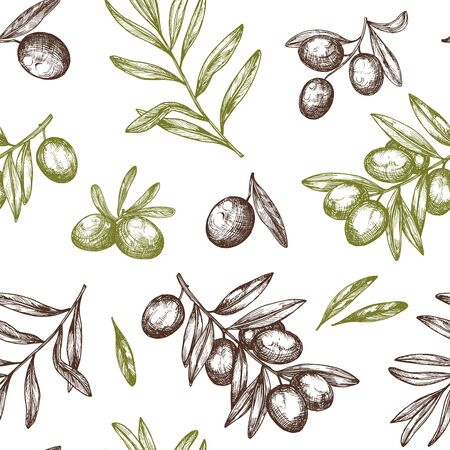 Hand drawn vector seamless pattern with ink olive tree twigs. Vector olive background. Retro decorative texture background for textile,paper,labels and etc.