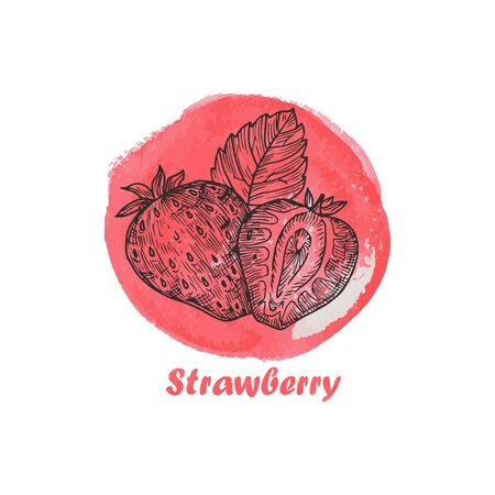 Hand drawn illustration with strawberry. Vintage watercolor background. Poster template frame with hand drawn berry for menu design. Healthy food concept. 版權商用圖片 - 150141058