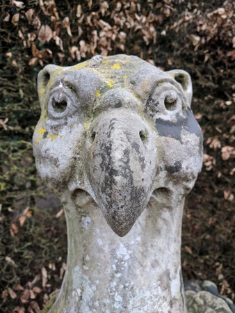 Oddball statue of a griffin in an old english garden