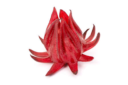 Close up fresh red Roselle fruit (Jamaica sorrel, Rozelle or hibiscus sabdariffa ) isolated on white background. Zdjęcie Seryjne