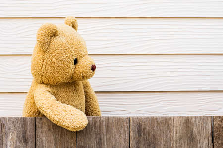Brown cute teddy bear standing behind the old wooden fence. Copy space for text and content.