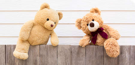Two brown cute naughty teddy bear climbing on the old wooden fence with yellow wood background. Copyspace for text.