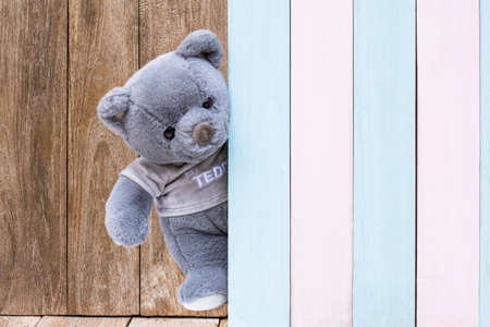 Cute gray teddy bear sneak behind the colorful wooden door isolated on old wood background. Copy space for text and content. Standard-Bild
