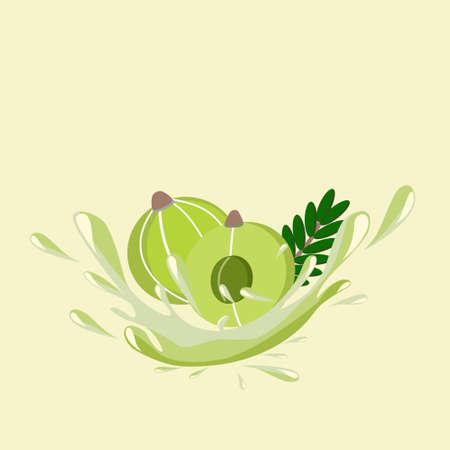 Amla or indian gooseberry juice splash icon vector illustration. Healthy drinks concept. Vektorgrafik