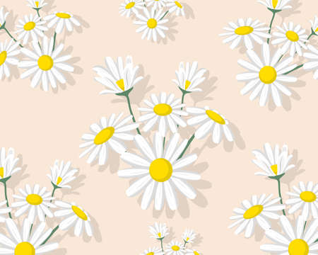 White daisy flower isolated on green background pattern texture vector illustration.