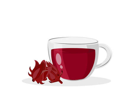 Glass cup of red hibiscus juice tea and fresh Roselle fruit (Jamaica sorrel, Rozelle, Sorelle or hibiscus sabdariffa ) isolated on white background. Icon vector illustration.