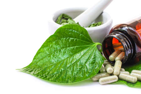 Betel leaf ( Piper sarmentosum, Wildbetal leafbush ) with herbal capsules pill and ceramic mortar isolated on white background. Natural alternative medical herbal plant and supplement concept. Standard-Bild