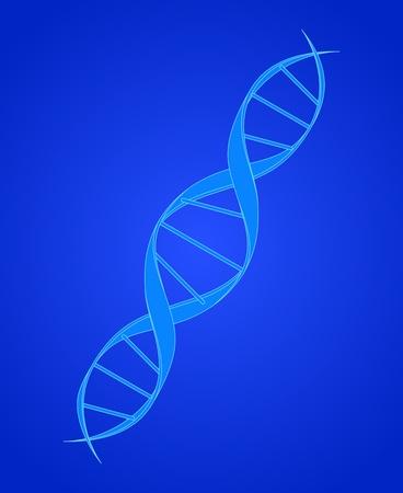 genetic engineering: DNA Spiral on Blue Illustration