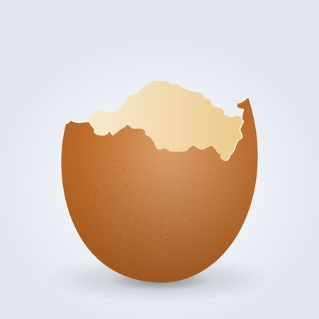 Broken Egg Shell Stock Vector - 12484356