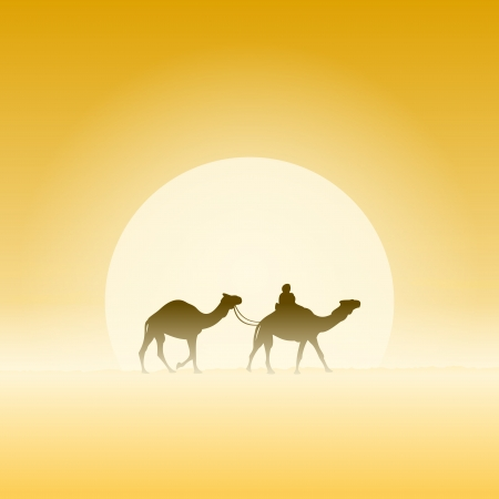 arabic desert: Two Camels and Sun