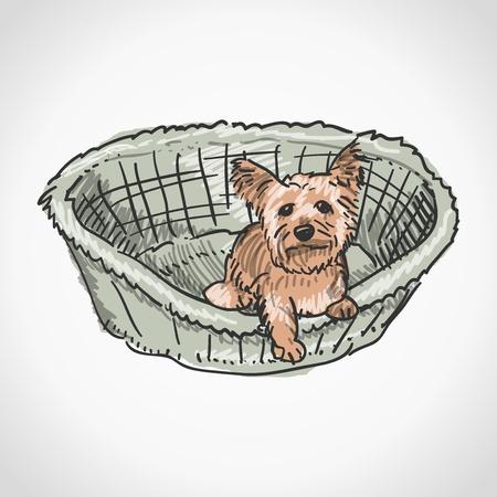 yorkshire: Yorkshire Terrier in Basket Illustration