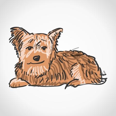 Sitting Yorkshire Terrier Stock Vector - 17087833