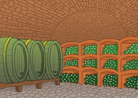 Wine Cellar Illustration Vector