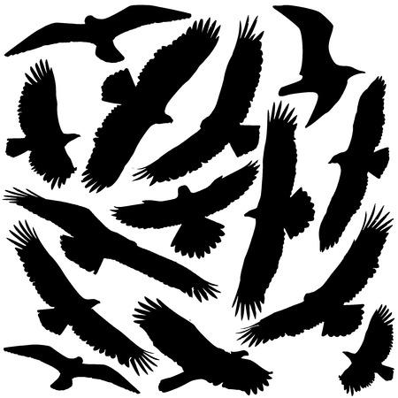 Silueta Predator Ilustración de vector
