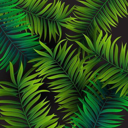 Tropical palm leaves design for text card. Vector illustration EPS10 Ilustração