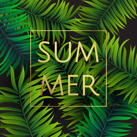 Tropical palm leaves design for text card. Summer. Vector illustration EPS10. Vettoriali