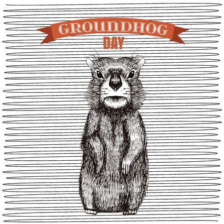 Happy Groundhog Day design with cute hand drawn by pen groundhog. Engraving illustration Illustration