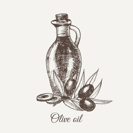 Hand drawn pencil bottle of olive oil. Still life of olive oil in a glass jar and sprigs of fresh olives. Vector illustration. EPS 10