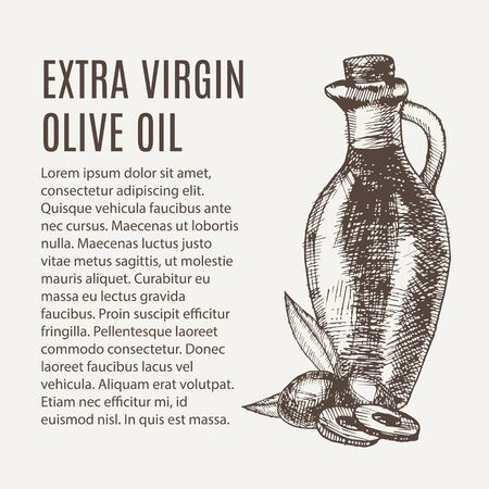Hand drawn pencil bottle of extra virgin olive oil. Still life of olive oil in a glass jar and sprigs of fresh olives. Vector illustration. EPS 10 Vectores