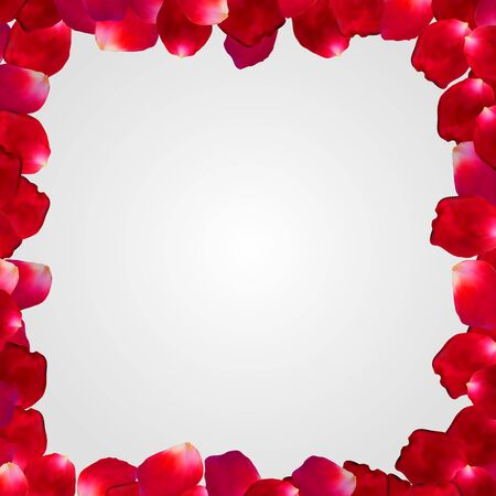 Red rose vector petal square frame isolated on white background. Eps 10. 向量圖像