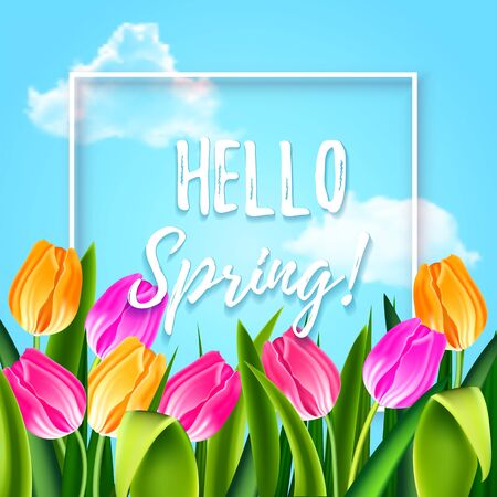 Hello spring tulips flowers background with lettering and white frame. Template for greeting card with tulip bouquet, pink and yellow flowers on blue sky background. Vector illustration EPS10