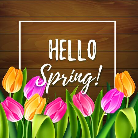 Hello spring tulips flowers background with lettering and white frame. Template for greeting card with tulip bouquet, pink and yellow flowers on wooden background. Vector illustration EPS10