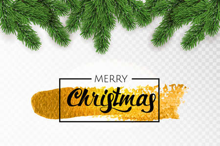 Green Merry Christmas fir tree branches on a transparent background. Vector illustration.