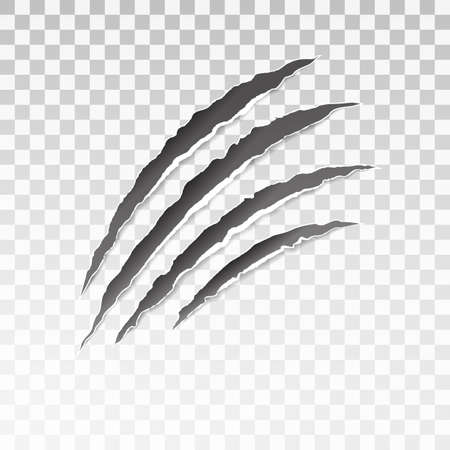 Animal black scratches on transparent background. Paper claws animal scratching. Claw scratch mark. Animal predator paw claw, knife scratch trace. Horror slash trace. vector illustration.