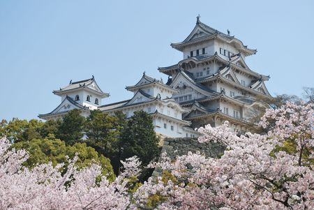 feudal: HIMEJI CASTLE DURING CHERRY BLOSSOM