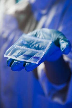 electrophoresis: Agarose gel plate for DNA separation after the electrophoresis Stock Photo