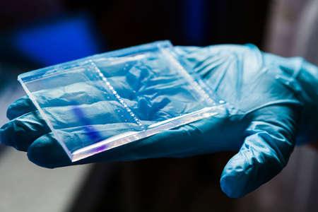 Agarose gel plate for DNA separation after the electrophoresis Stock Photo