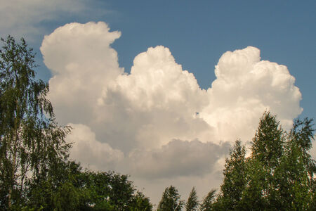 bright cumulus clouds framed by green birches Stock Photo
